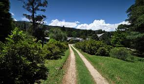 Where you hike in the mountains at Hogsback